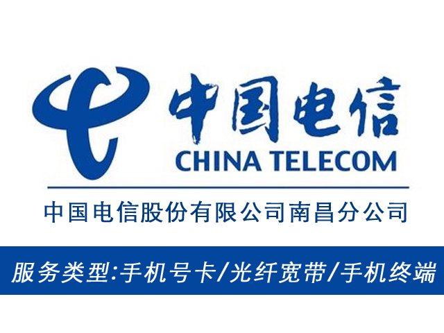 中国电信(南昌分公司店)