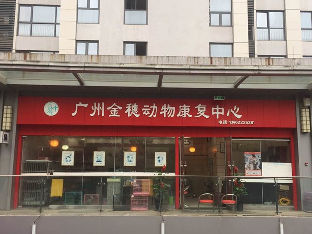 广州金穗动物康复中心