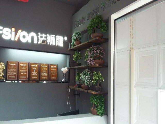 Fsilon 法狮龍时尚吊顶(桐城店)