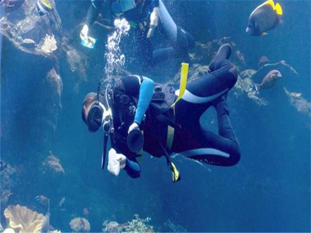 青岛分界线潜水俱乐部
