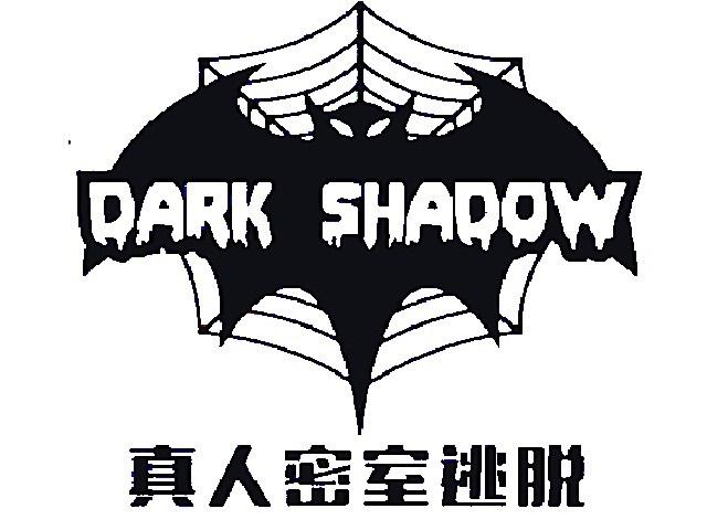 黑暗阴影密室