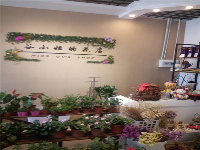 谷小姐的花店