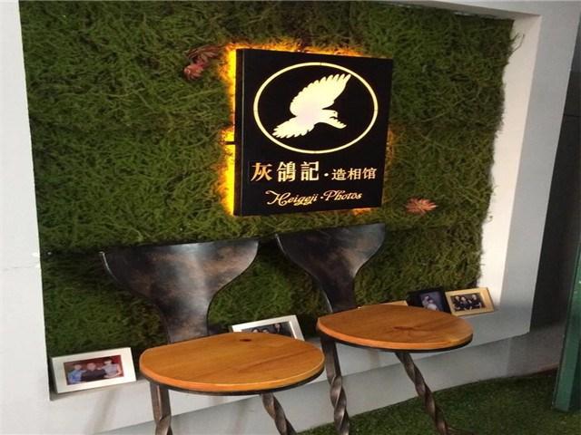灰鸽记·造相馆
