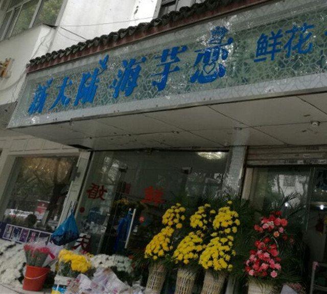 新大陆海芋恋鲜花