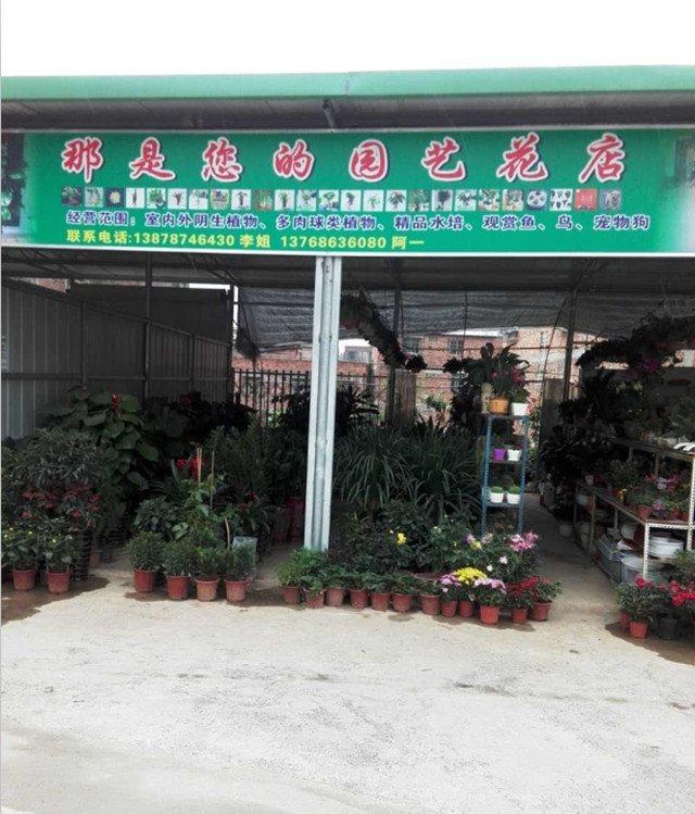 那是您的园艺花店