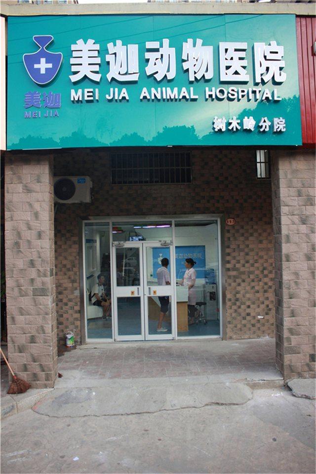 美迦动物医院