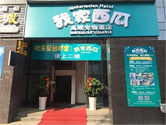 武汉市洪山区我家西瓜宠物生活馆