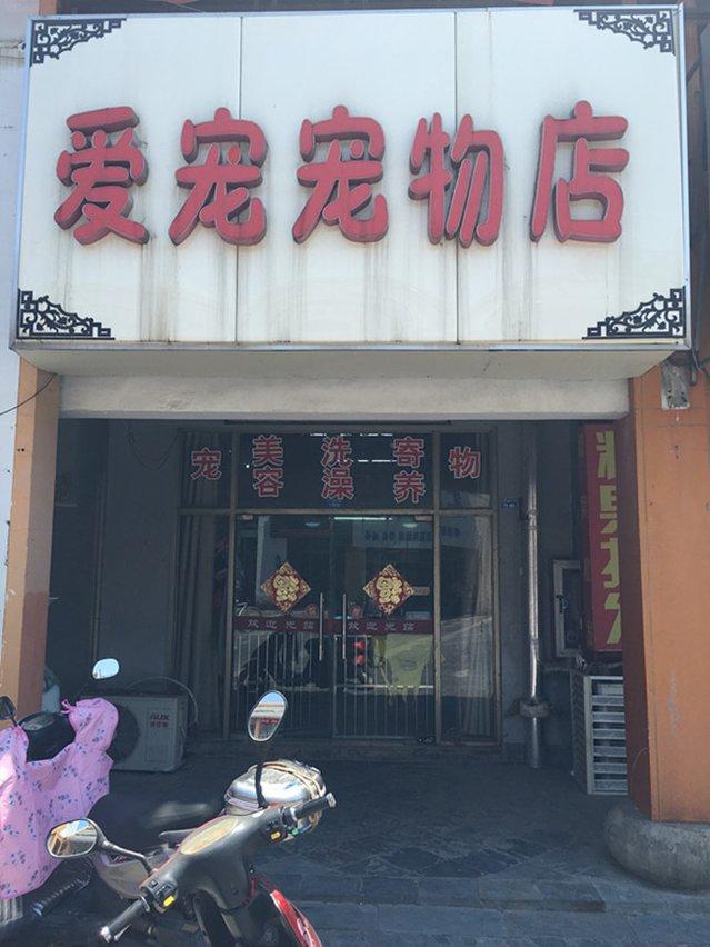 爱宠宠物店(凓水店)