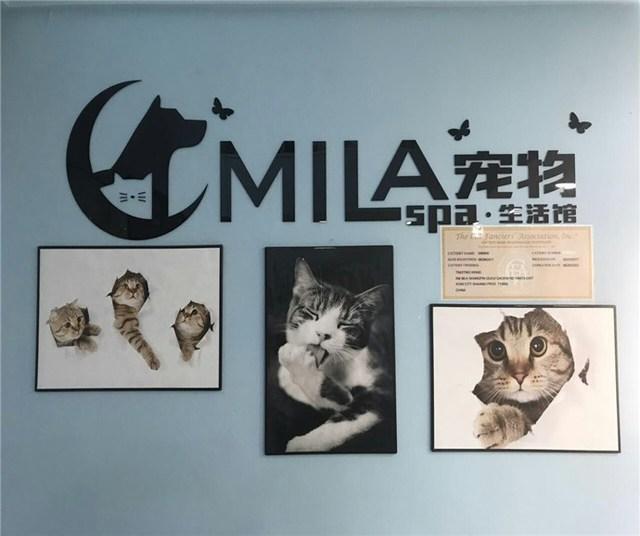 MILA宠物SPA生活馆