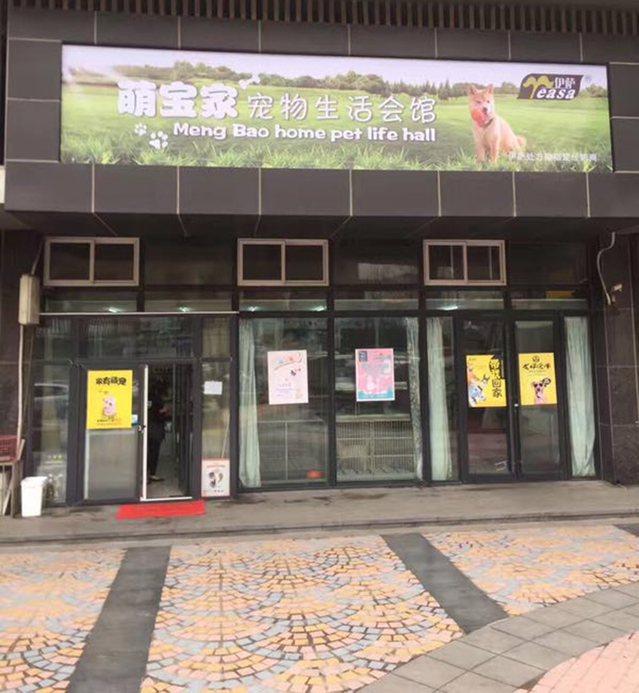 青岛萌宝家宠物生活会馆