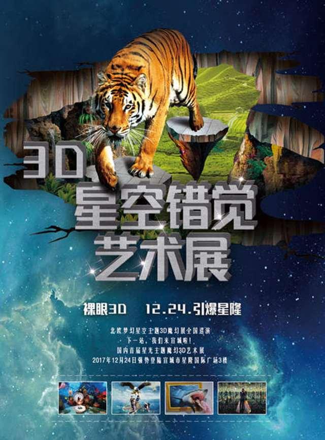 3D星空魔幻艺术展(宣城店)