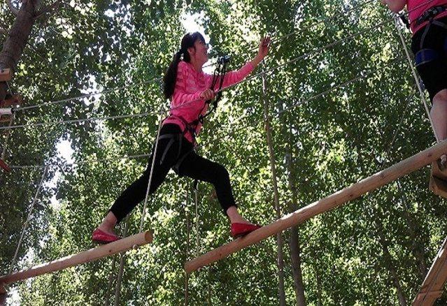快乐猴树上穿越