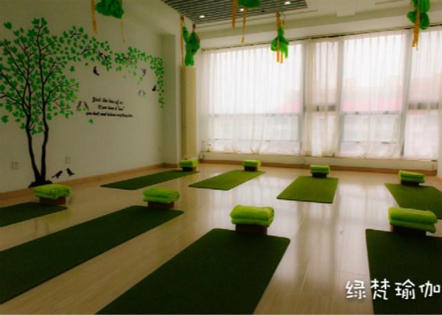 绿梵瑜珈养生会所(旧宫店)
