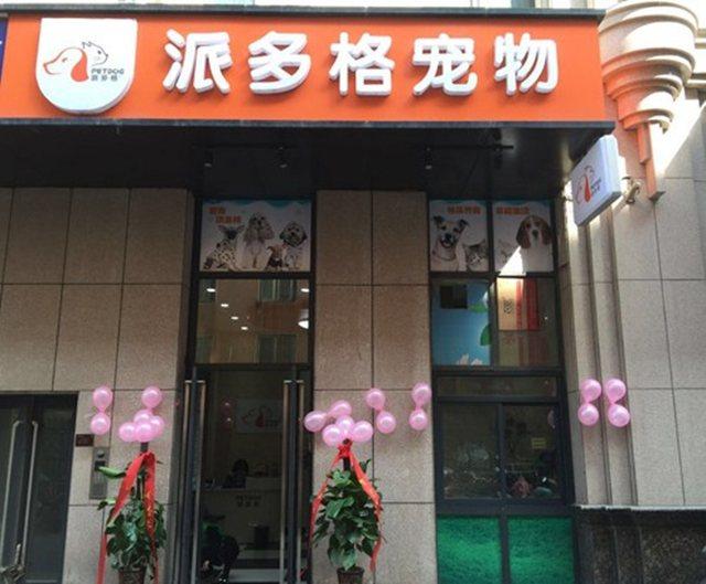 派多格宠物(朝阳大街店)