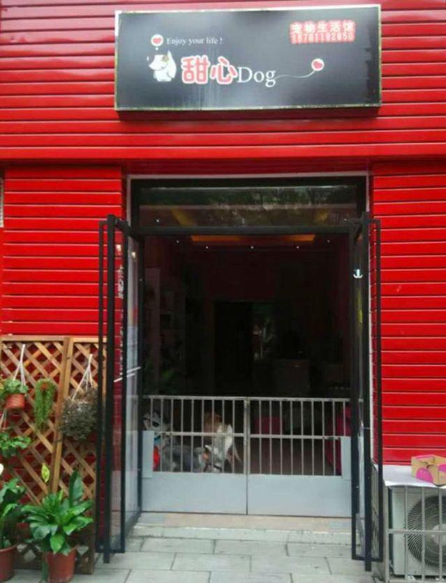甜心Dog宠物生活馆