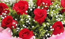 罗马嘉园花店玫瑰花束