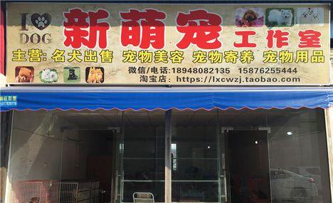 新萌宠物店