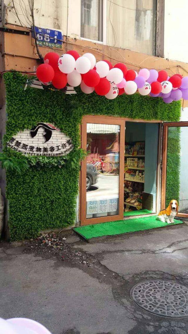 辰楚熙宠物美容工作室