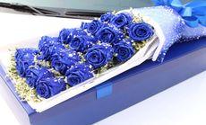玫瑰之约19朵蓝色妖姬礼盒