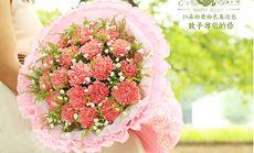 叶上花19朵康乃馨花束