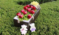 千百度鲜花11朵玫瑰礼盒