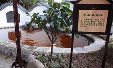 星湖园温泉足疗套餐