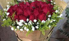 鲜花美鲜花红玫瑰