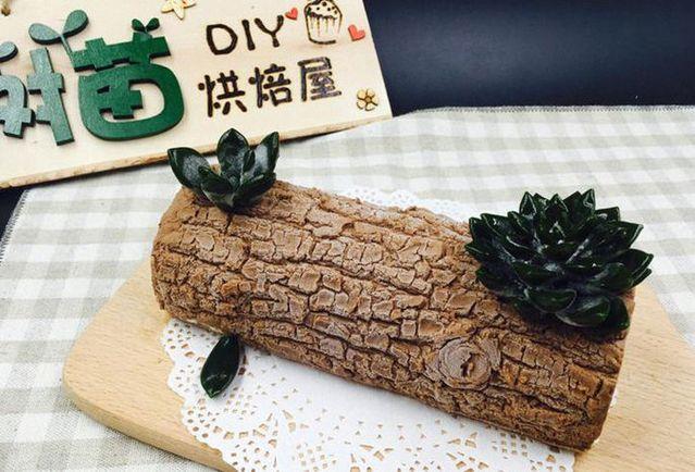 树苗DIY烘焙屋(中关村店)