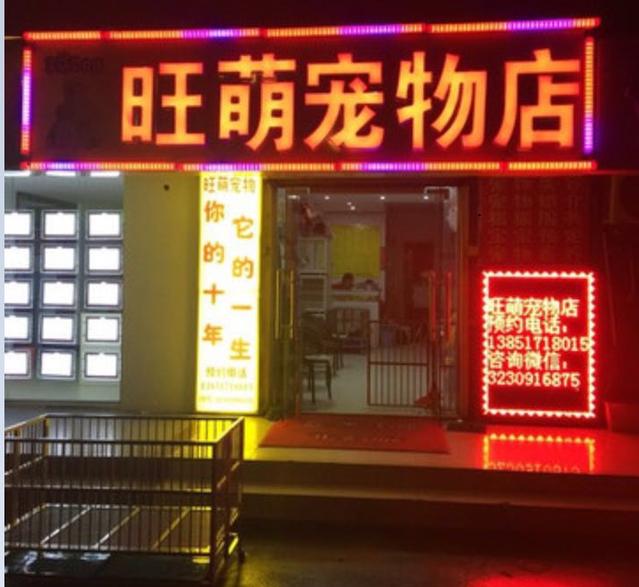 旺萌宠物店