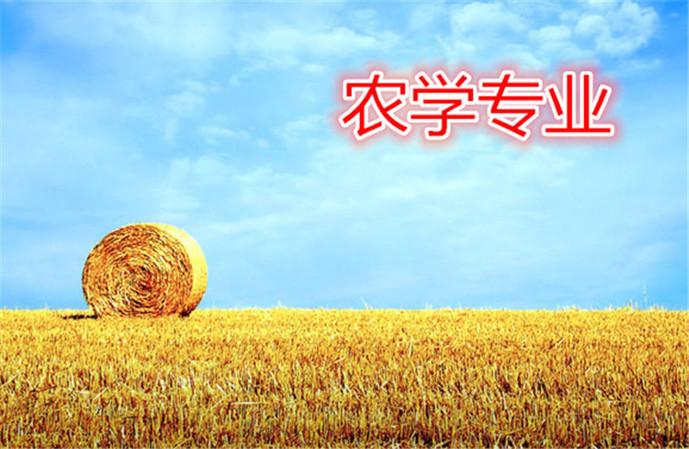 海文考研(桂林分部店)