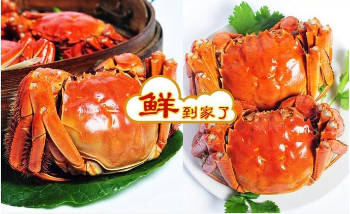 蟹庄缘阳澄湖大闸蟹(台州店)