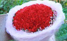 喵有树花店99朵精品玫瑰