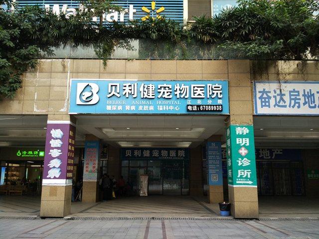 贝利健宠物医院(江北分院店)