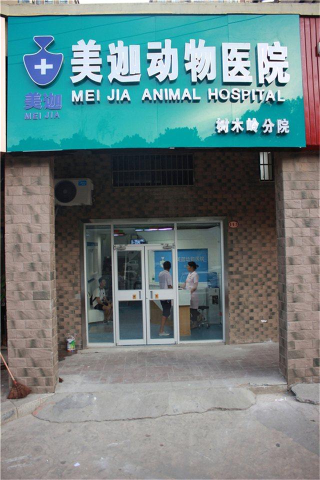 美之迦动物医院