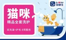 方庄伴侣宠物猫精品全套洗护