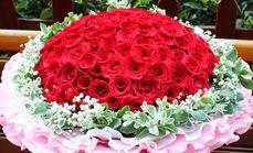 花雨石鲜花99朵玫瑰花