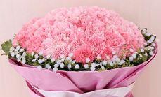 蔷薇花卉596元单人服务