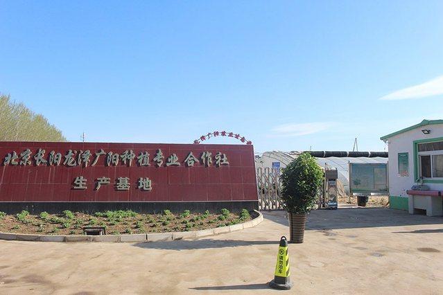 北京长阳龙泽广阳种植专业合作社