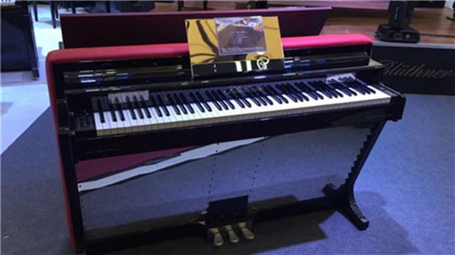 珠江智能钢琴艺术中心