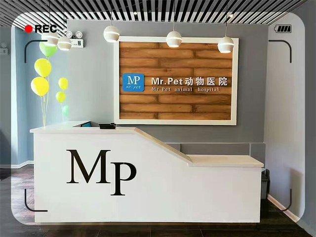 MrPet动物医院