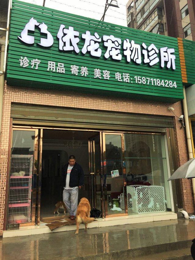 依龙宠物诊所