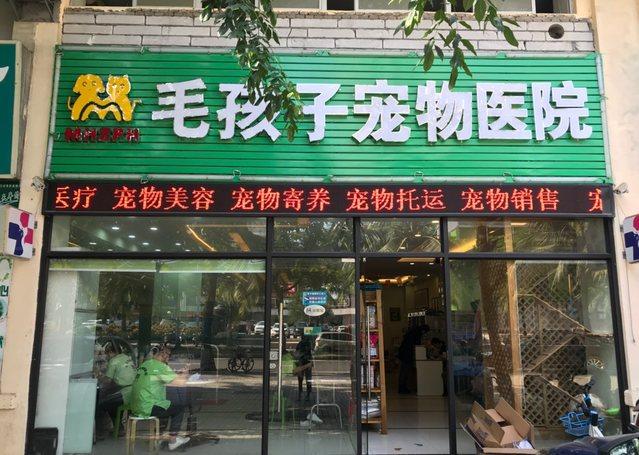 毛孩子宠物医院(金贸店)