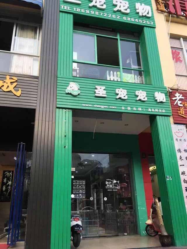 圣宠宠物店(海口海岛阳光店)