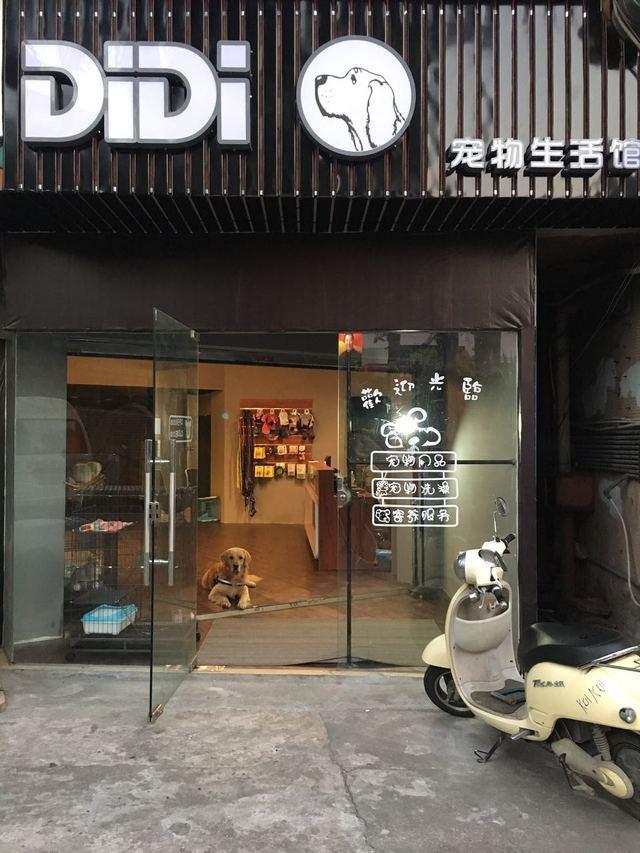 DiDi宠物生活馆