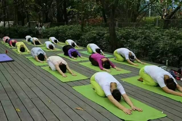 朴道健身瑜伽会所