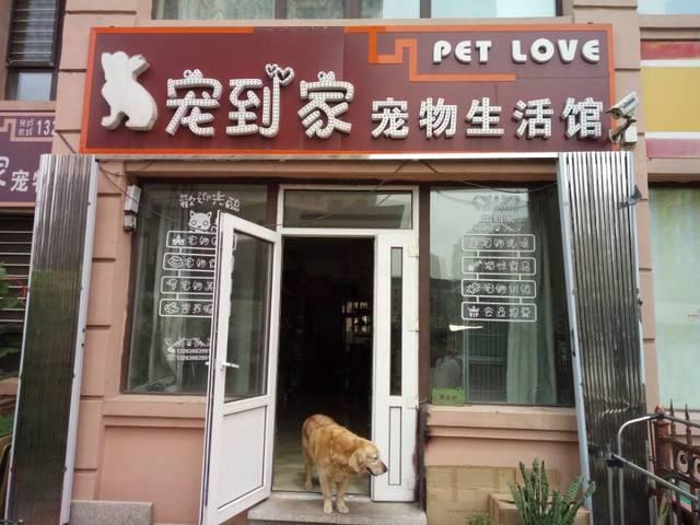 宠到家宠物生活馆