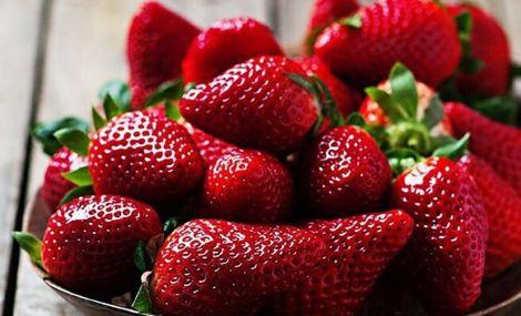 龙地草莓采摘园