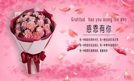 爱之裳19枝康乃馨花束