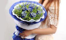 玫瑰之约11支蓝色妖姬花束