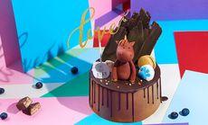 王子墨羽骑士芝士奶油蛋糕